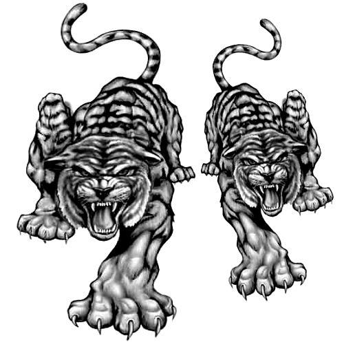 Wzór Tatuażu Pantera Monika Wypożyczalnia Sprzętu